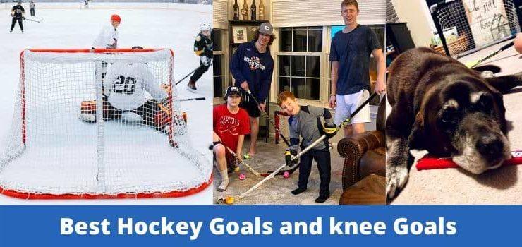 best hockey goals
