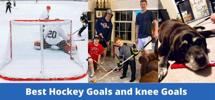 Best Hockey Goals and knee goals post reviews 2021