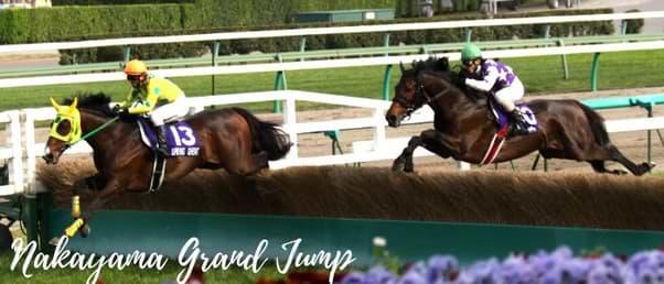 Nakayama Grand Jump