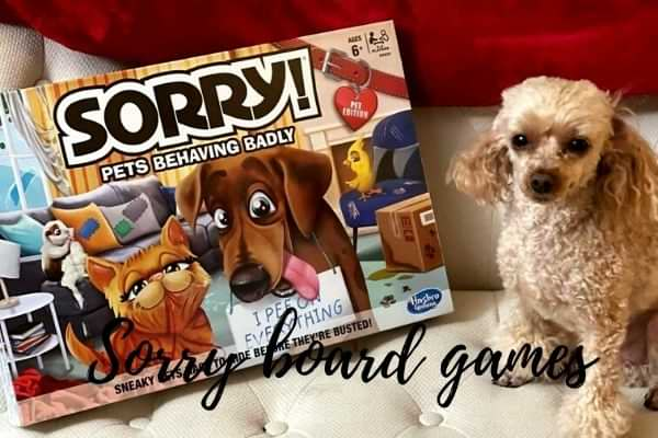 best Sorry board game