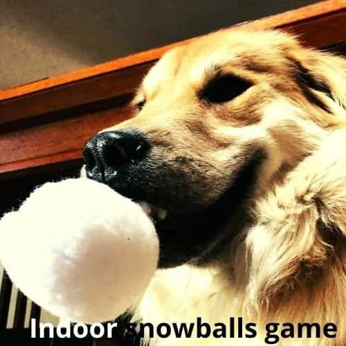Indoor snowballs game